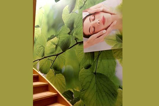 Yves Rocher - papier peint - Agraph Publicité - agence publicitaire - Melesse (35)